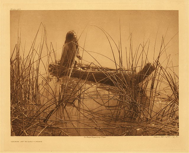 Aged Pomo woman by Edward S. Curtis. 1924.