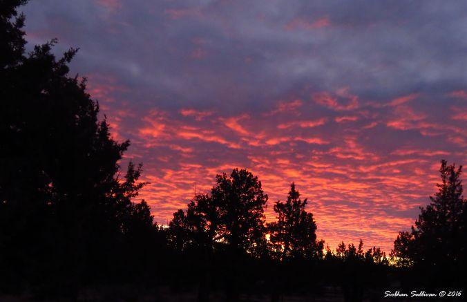 Sunset 2Feb2016
