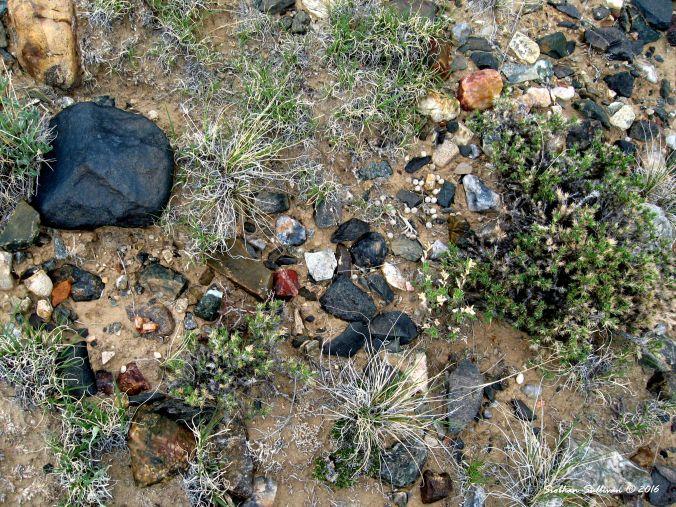 Rocks near Thermopolis, WY