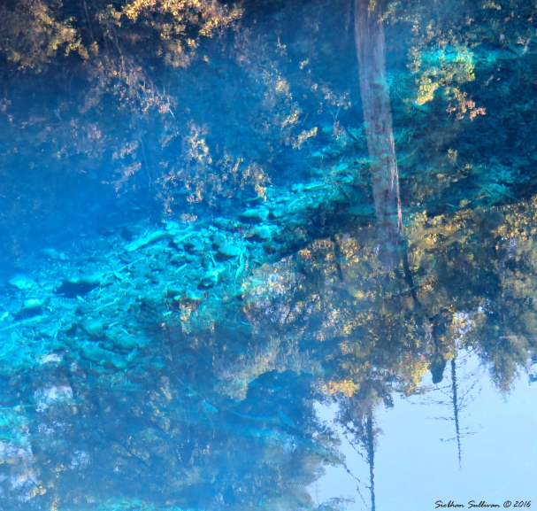 Blue Pool Reflections 15Sept2016