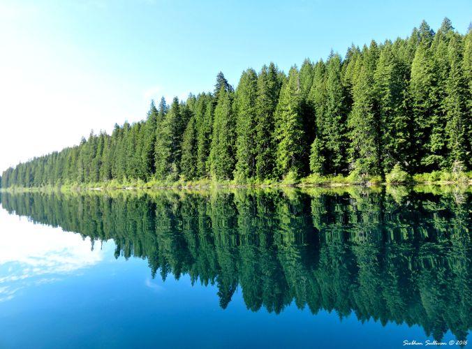 Clear Lake Reflections, Linn County, Oregon