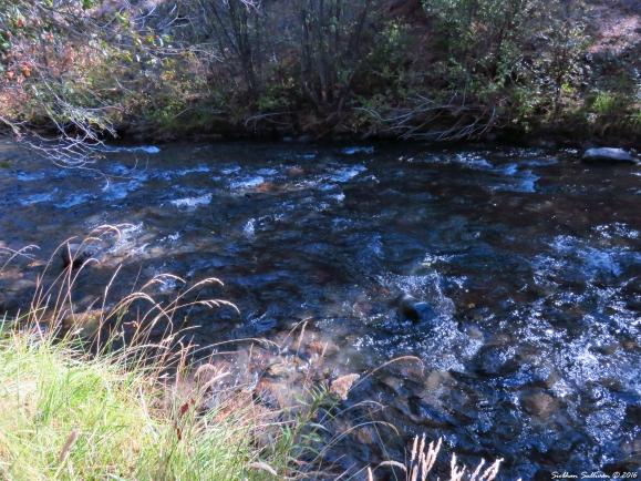 Whychus Creek prior to restoration 6October