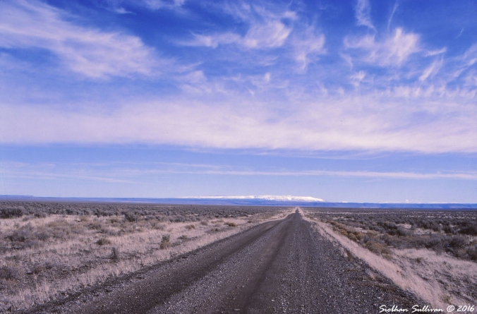 Driving towards Steens Mountain