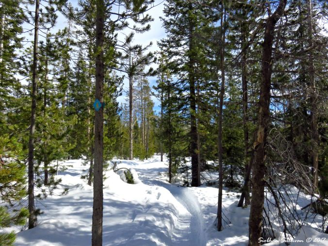 Swampy Lakes Short Snowshoe trail, Bend, Oregon 14Feb2017