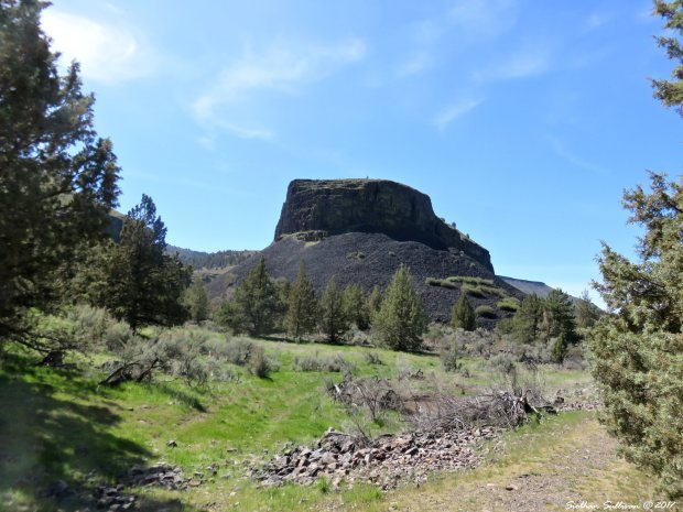 Round Mesa Trout Creek trail 3Apr2017