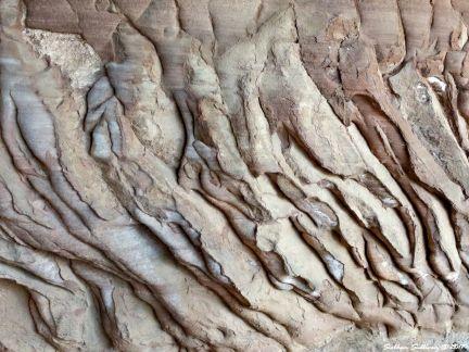 Cave wall in Canyonlands National Park, Utah 5May2017